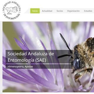 Sociedad Andaluza de Entomología (SAE)